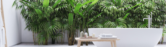 Tendance bain zen exotique nature plante
