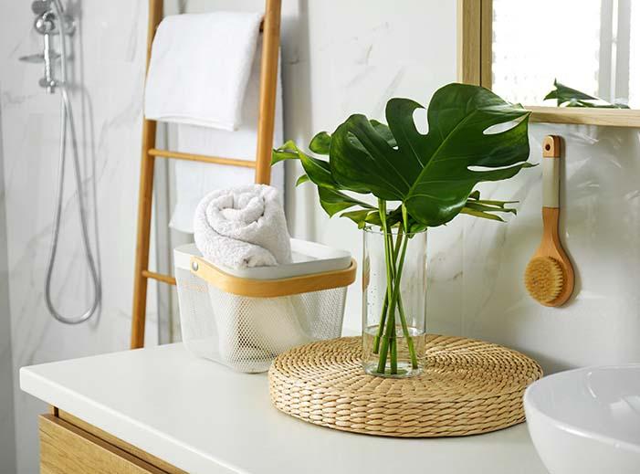 photo salle bain exotique nature exotique blanc