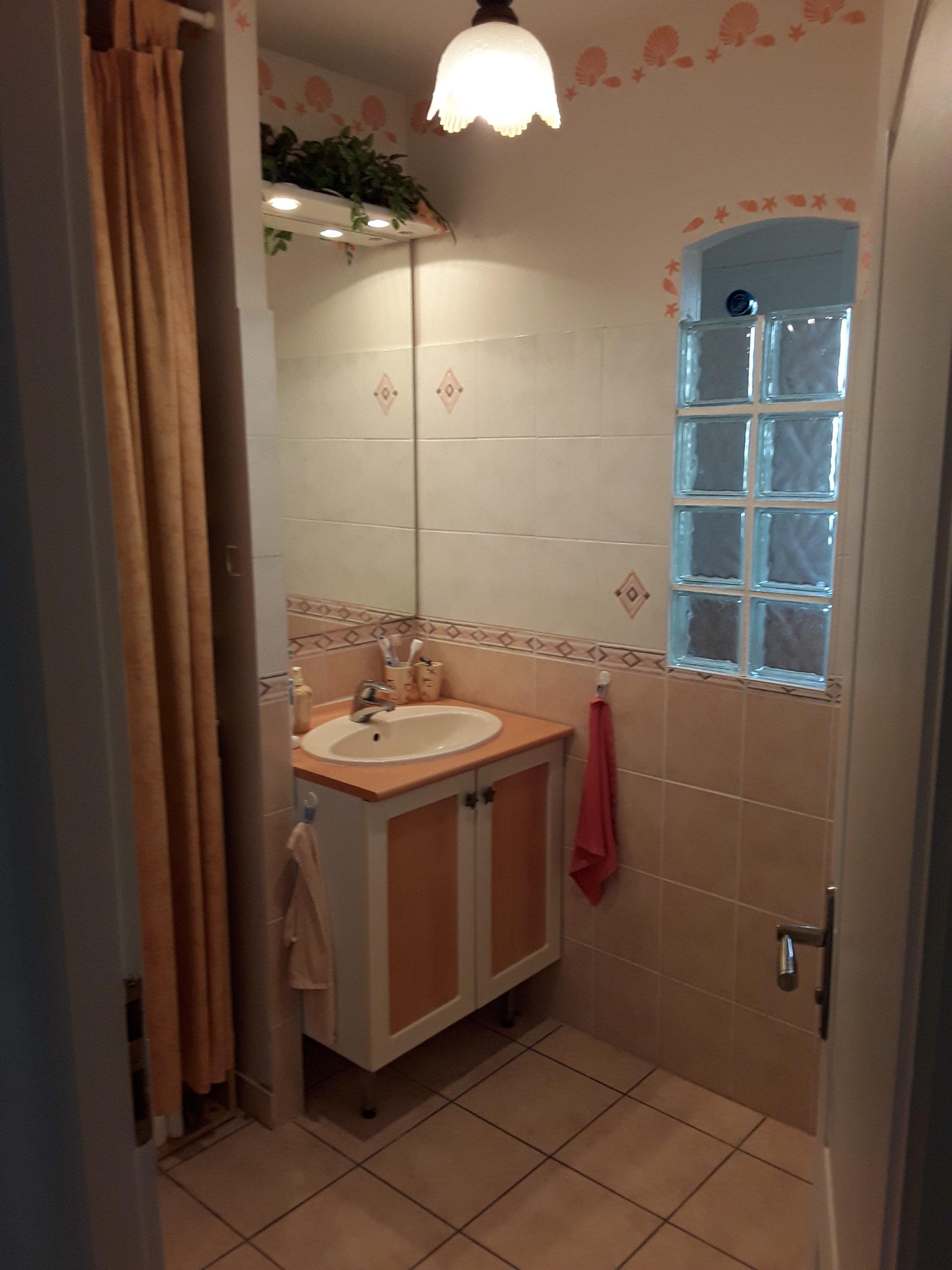 projet salle bain confortable naturelle avant